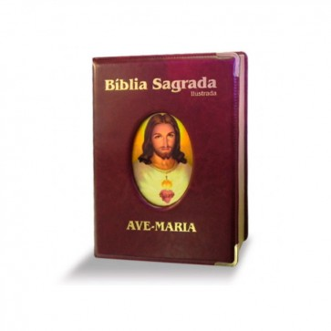 BÍBLIA ILUSTRADA LUXO-GRANDE -MARROM